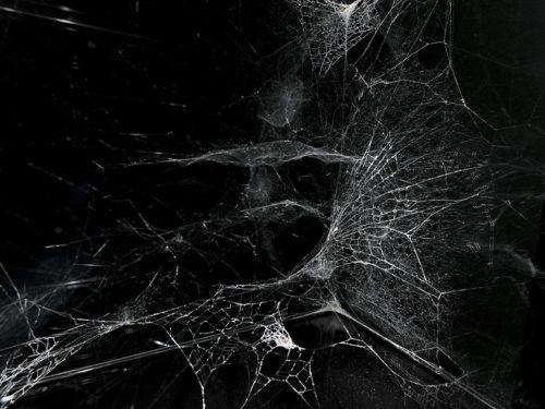 Aracne – Bollettino anticarcerario n.1