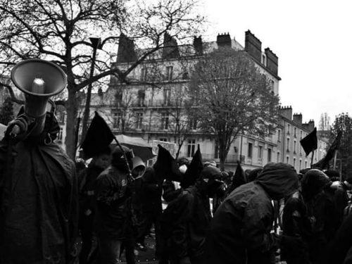 Trentino – Manifesto sull'Operazione Panico – Ghespe in sciopero della fame