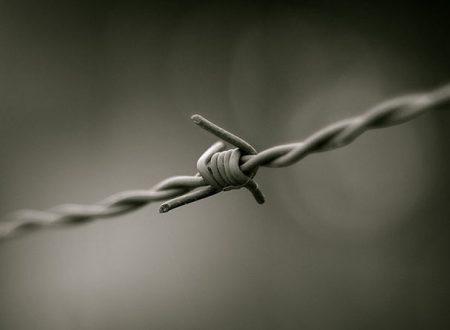 Aggiornamento sommario sulla situazione de* prigionier* in sciopero della fame