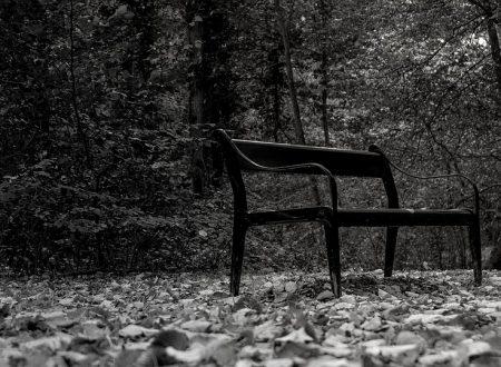Germania: Lettera di uno dei 3 della panchina del parco dal carcere di Holstenglacis