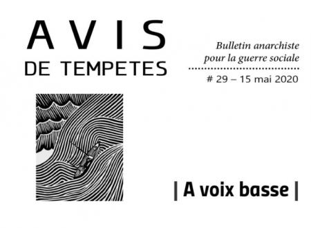 E' uscito Avis de Tempêtes Numero 29 – Bollettino anarchico per la guerra sociale (Maggio 2020)