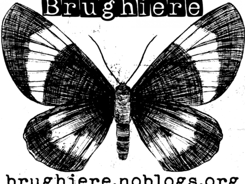 Brughiere – Cronache dai bassifondi bolognesi e dintorni